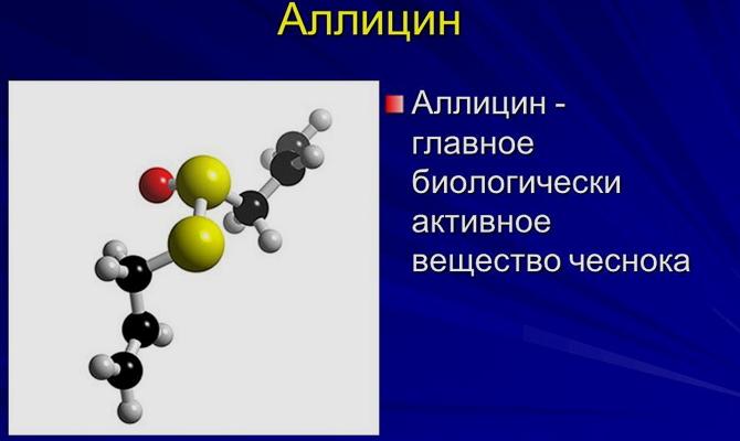 Аллицин в составе чеснока