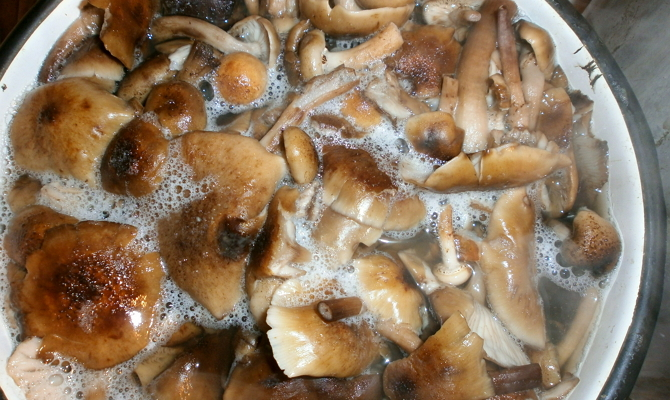 рябина рецепты приготовления на зиму