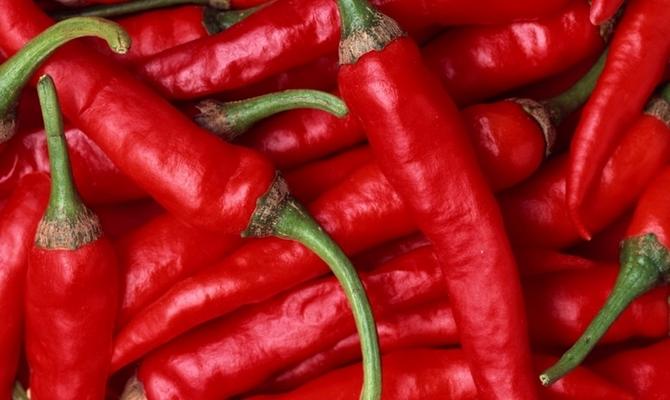 Красный горький перец
