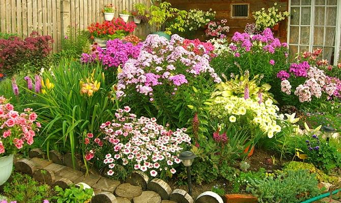 Как оформить клумбу перед домом – фото и инструкции к лучшим цветникам Видео