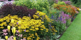 Цветочные клумбы на все сезоны – создайте цветник своей мечты!