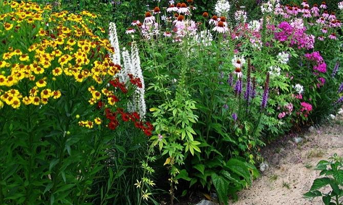 Как лучше оформить цветник на территории маленького подворья?