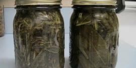 Листья грецкого ореха – чем полезны настойки, отвары и чай из них?