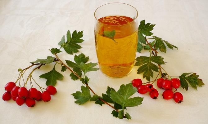 Раскрываем полезные свойства – как заваривать плоды?