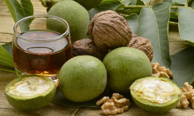 Чем полезен грецкий орех – изучаем скорлупу, перегородки и листья