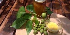 Грецкий орех – польза и вред, лечение с помощью настоев и отваров