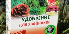 Подкормка хвойных весной – несколько правил, как не причинить вред растениям