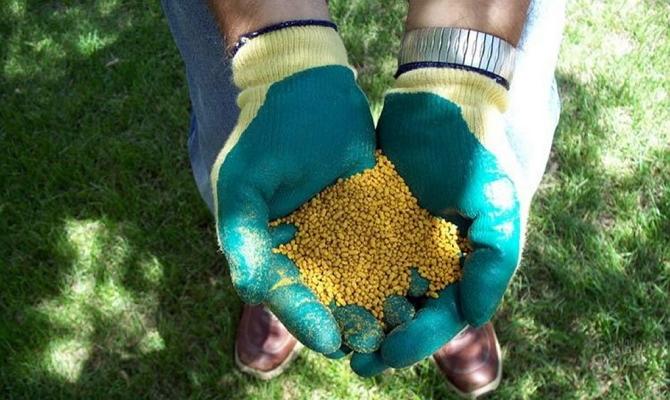 Как правильно вносить разные типы удобрений?