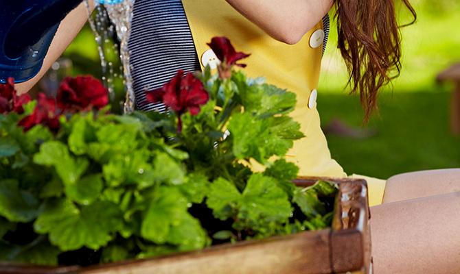 Какие вредители могут погубить цветы?