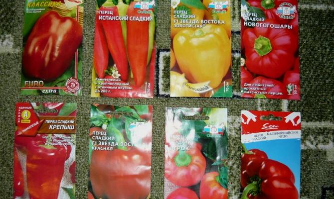 Какой сорт болгарского перца стоит выбрать для посева?