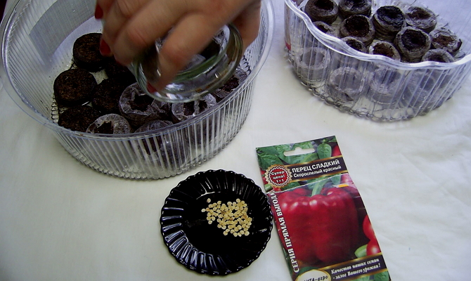 Подготавливаем почву для рассады и сеем семена