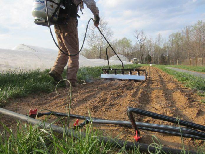 Какой способ обработки и облагораживания земли лучше: опрос