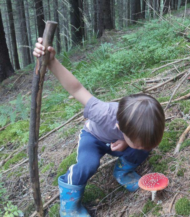 Ребёнок собирает грибы