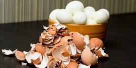 Заготавливаем яичную скорлупу к весне – 4 полезных применения