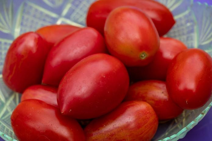 Сохранить помидоры до Нового года возможно соблюдая нехитрые правила