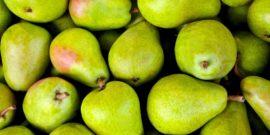 Лучшие самоплодные сорта груш: особенности выращивания и ухода, отзывы садоводов, критерии выбора сорта